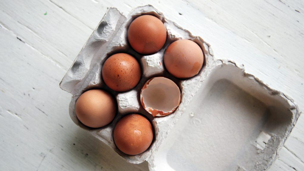 egg-protein